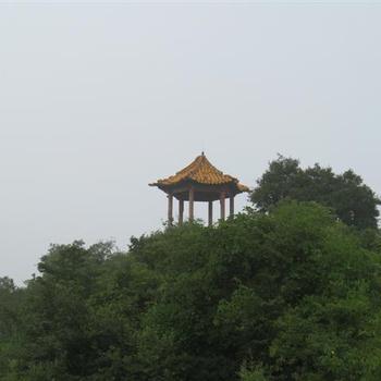 Шаолинь 2009 июль