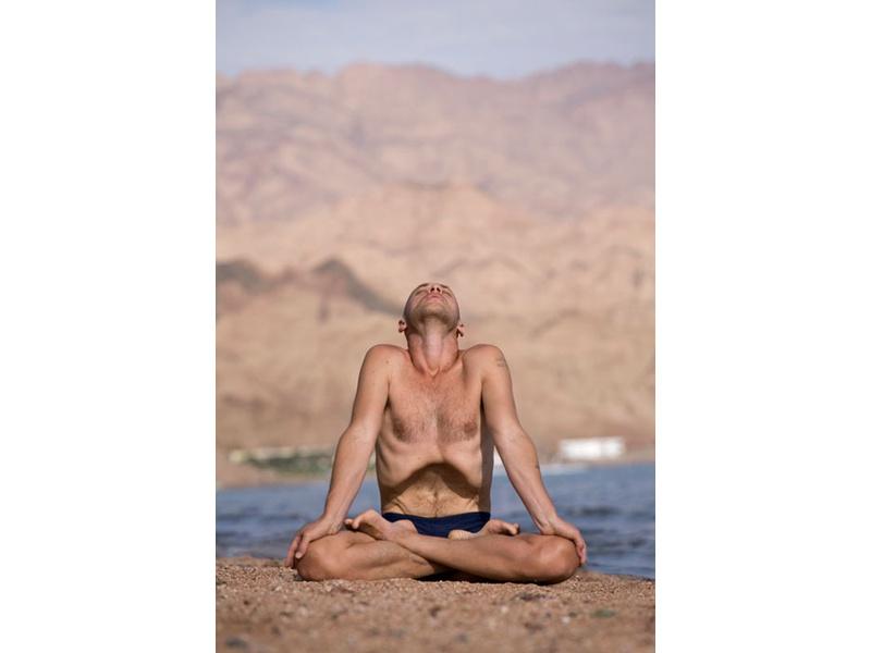 Интенсивный  тренировочный курс «Основы Йоги Теней»