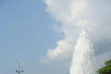 Голуби у фонтана