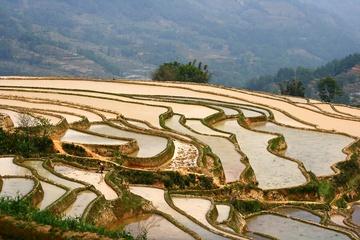 yunnan_rice-05.jpg