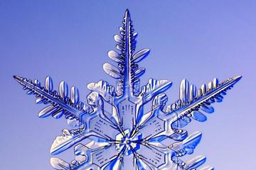 pica4u.ru_1213679609-snow-flakes-01.jpg