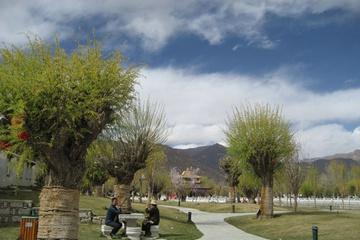 Lhasa-park..jpg