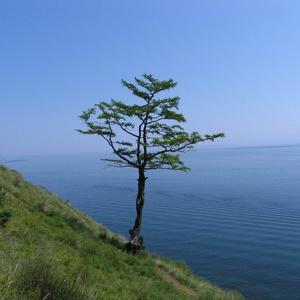 Ретрит на Байкале 2011 - фотографии