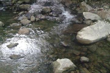 nature4.jpg