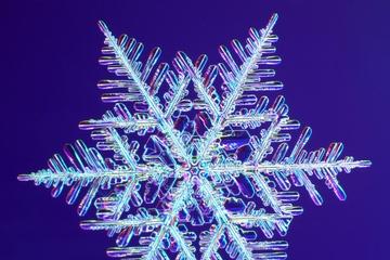 pica4u.ru_1213679592-snow-flakes-11.jpg