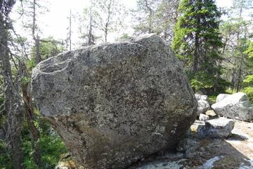 Живой камень на капище
