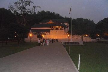 Шри. Храм зуба Будды. Сам зуб показывают раз в 6 лет.