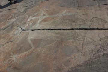 Каменная летопись древних