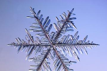 pica4u.ru_1213679538-snow-flakes-02.jpg