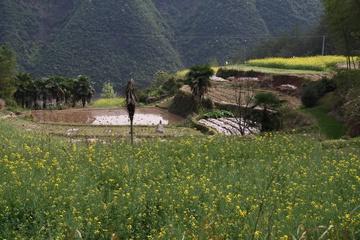 Деревня Хуан Ли Нин