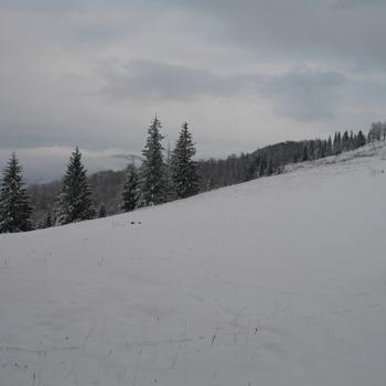 Карпаты: зима...